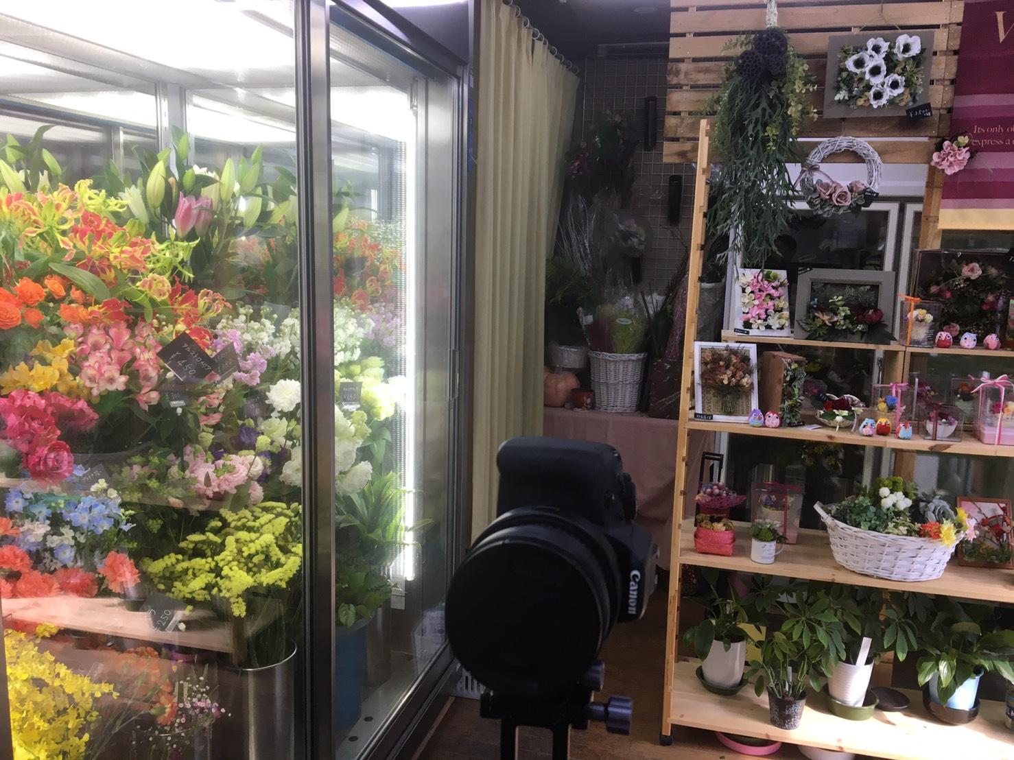Googleストリートビュー屋内版撮影 花のフローラ